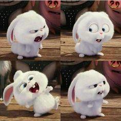 Cute Bunny Cartoon, Cute Cartoon Pictures, Cute Profile Pictures, Funny Iphone Wallpaper, Disney Phone Wallpaper, Cute Wallpaper Backgrounds, Snowball Rabbit, Purple Galaxy Wallpaper, Rabbit Wallpaper