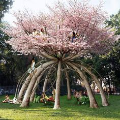 Behold the ultimate tree house! What: The Patient Gardener project using ten Japanese cherry trees Where: School campus in Milan, Italy Who: Designed by Swedish architects Visiondivision Why: A two-story treehouse study retreat for students. The vision: a Dream Garden, Garden Art, Garden Plants, Garden Design, House Design, The Secret Garden, Japanese Cherry Tree, Dame Nature, Unique Trees