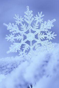 #photography #snowflake