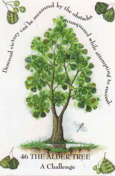 Tree Magick by Gilliam Kemp The Alder Tree, a symbol of strength and battle… Wicca Witchcraft, Wiccan, Magick, Celtic Signs, Celtic Astrology, Alder Tree, Magical Tree, Celtic Tree, Book Of Shadows
