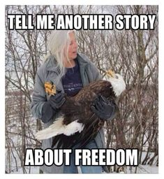 I would like to bring your attention to the best collection of funny murica memes you have ever seen. If you like it, share these funny murica meme pictures with your friends. Memorial Day Meme, 4th Of July Meme, Funny Quotes, Funny Memes, It's Funny, Memes Humor, Life Quotes, Military Humor, Army Humor