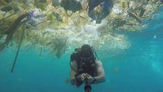 Bali's battle against plastic pollution Latest News