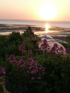 Whitstable beach at sunset - only 9 more sleeps until we are there for the Whitstable Oyster Festival (27th/28th July)