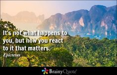 It's not what happens to you, but how you react to it that matters. - Epictetus #wisdom #brainyquote