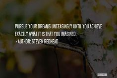 Pursue your dreams unceasingly until you achieve exactly what it is that you imagine. ~ Steven Redhead ~ #SimplyAGame