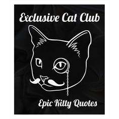A cat + Exclusive Cat Clu... = Happy! Check out more here http://www.epickittyquotes.com/products/exclusive-cat-club-fleece-sherpa-blanekt?utm_campaign=social_autopilot&utm_source=pin&utm_medium=pin