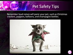 Holiday safety (created for use in Power Point presentation in clinic lobby while throwing in educational content for clients)