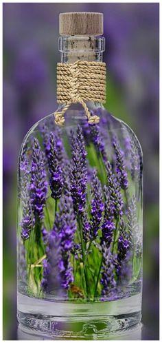 Magical house and garden decoration with lavender Magische Haus- und Gartendekoration mit Lavendel Lavender Cottage, Lavender Green, French Lavender, Lavender Fields, Lavender Flowers, Lavender Oil, Purple Flowers, Lavender Decor, Purple Love