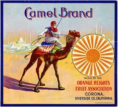 vintage fruit lables riverside california | Corona Riverside County Camel Orange Citrus Fruit Crate Box Label Art ...