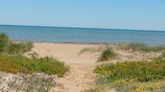Beach, Water, Photography, Outdoor, Gripe Water, Outdoors, The Beach, Outdoor Games, Photograph