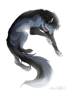 Yuma || Female || 1 year || Quiet and careful, but very strong and agile. || No mate or pups (me)