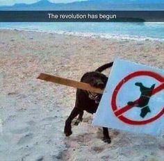 Quite the rebel!