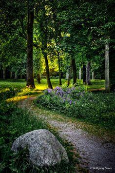 along the garden path - Tumblr_miw1o43iov1risepno1_500_large