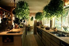 This would be such a comfortable kitchen to cook in!  So spacious, and the plants make it look very inviting!