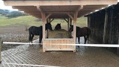 Erfahrungsberichte - Skandwood Dream Stables, Horse Stables, Horse Farms, Dream Barn, Rinder Stall, Round Bale Feeder, Paddock Trail, Dressage, Hay Feeder For Horses