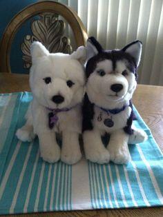 Webkinz signatures Arctic fox and Siberian husky!!!! :D