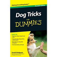 Dog Tricks for Dummies Book Portable Edition: Want to teach your dog the coolest tricks? This step-by-step guide helps you easily train your four-legged friend using positive reinforcement. By teaching Fido a variety of tricks—from simple moves to more complex routines—you'll fulfill your dog's desire to be the star of the show.  $3.99  http://calendars.com/Assorted-Dogs/Dog-Tricks-for-Dummies-Book-Portable-Edition/prod201300012184/?categoryId=cat00188=cat00188#