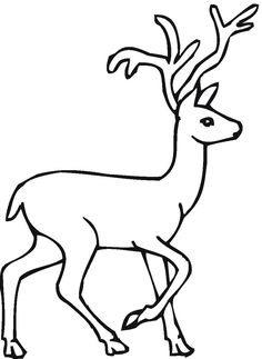 46 Best deer coloring pages images | Deer, Coloring book ...