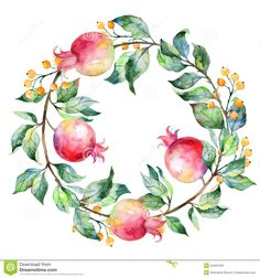 Vector Round Frame Of Watercolor Pomegranate And Berries. - Download From Over 59 Million High Quality Stock Photos, Images, Vectors. Sign up for FREE today. Image: 54497400