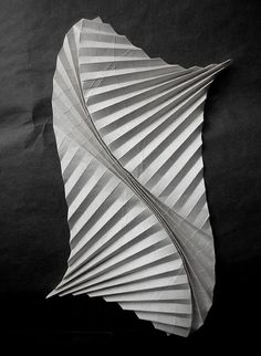This fold creates a sense of movement in a material that you would usually see as stiff- the curve folds really brings life into a piece of paper Origami And Kirigami, Origami Paper Art, Paper Crafts, Oragami, Paper Folding Art, Paper Cutting, Andrea Russo, Architecture Origami, Atelier Theme