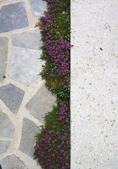 Concrete Tiles, Brick And Stone, Flagstone, Brussel, Stone Flooring, Walkway, Stepping Stones, Garden Design, Sidewalk