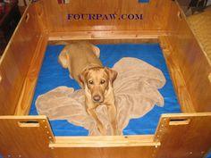Whelping Box Construction Plans Dog Whelping Box, Whelping Puppies, Welping Box, Dog Birth, Puppy Supplies, Pet Cage, Dog Runs, Dog Boarding, Labradoodle