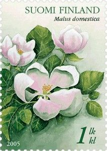 Omenankukka  Finland New York Canvas, Valley Of Flowers, Flora Flowers, Going Postal, Flower Stamp, Vintage Stamps, Small Art, Stamp Collecting, Finland