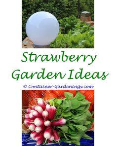Winter Garden Ideas California Diy Fairy With Kids Of Chinese Gardens