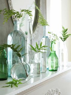 Collections of differently shaped blue, green and clear glass bottles filled with little leaves and blossoms.