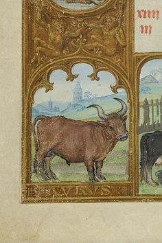 - Images from Medieval and Renaissance Manuscripts - The Morgan Library & Museum Taurus Art, Zodiac Signs Taurus, Zodiac Art, Medieval Life, Medieval Art, Illuminated Letters, Illuminated Manuscript, Renaissance, Traditional Artwork