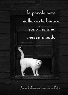 Nero come la notte dolce come l'amore caldo come l'inferno: Le parole nere sulla carta bianca sono l'anima mes...