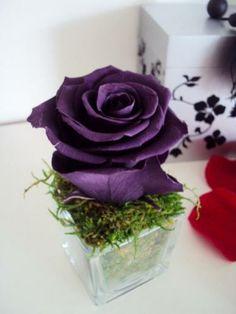 Petit VASE CUBE ROSE éternelle violette MOUSSE NATURELLE fleur stabilisée préservée