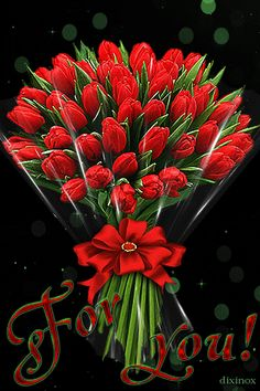 "Képtalálat a következőre: ""by dixinox"" Flowers Gif, Red Flowers, Pretty Flowers, Red Roses, Beautiful Gif, Beautiful Roses, Flower Boxes, My Flower, I Love You Husband"