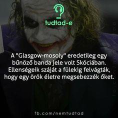 Curiosity, Glasgow, Did You Know, Horror, Joker, Anna, Tv, Quotes, Alternative