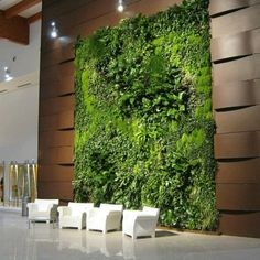 Vertical garden.Looking for a Green-wall or Vertical garden in your space?  Contact PlantFinderPro to connect you to a professional.  https://plantfinderpro.com/contact/