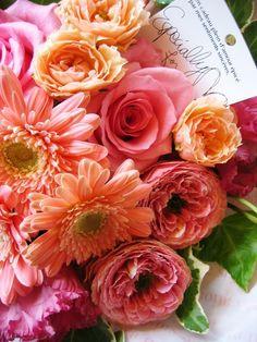 Pink  Gerbera  Rose +.:゚☆゚