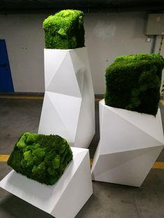 VONDOM FAZ  by Dominika Cempel. Moss . Atelier mchu i Roślin stabilizowanych . Gdynia