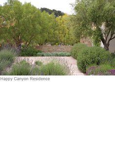 happy-canyon-residence-3  Pamela Burton landscape architect - I love her work!