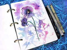 #DoSketch #ArtBySilmairel #Art #Арт #Artwork #Рисунок #Artist #Художник #InstaArt #ИнстаАрт #Watercolor #Акварель #Акварелька #Liner #Линер #Линеры #Doodle #Дудл #Flowers #Цветы #АнютиныГлазки #Sketch #Cкетч #SketchBook #Скетчбук #WatercolorPainting #InstaWatercolor #Сейчас_Рисую #ОдинДеньсХудожником #ХудожникиМогутВсюНочь