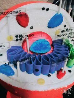 C lula animal 3d biology pinterest decoraci n del for Celulas fotoelectricas para puertas