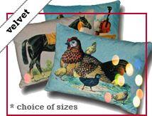 Cushions in Cotton Velvet