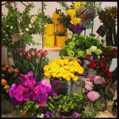la boutique Pompon, flowershop, fleuriste Paris, Montreuil ©boutiquepompon, www.boutique-pompon.fr