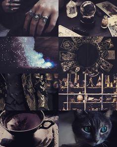 // Magnus Bane Aesthetic //