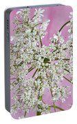 White Wild Cow Parsnip Flower Portable Battery Charger by Sandra Foster