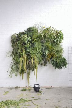 botanic foliage installation by Pop & Scott