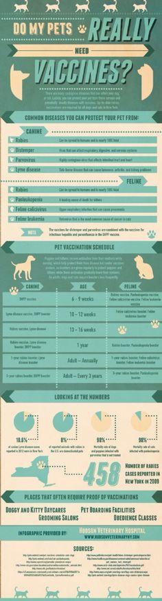 free printable dog vaccination record