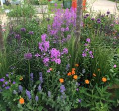 Chelsea Flower Show planting by Butter Wakefield