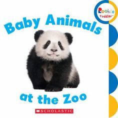"""""""Baby Animals at the Zoo"""" By: Rookie Toddler; BOARD BOOK - B http://find.minlib.net/iii/encore/record/C__Rb3125168"""