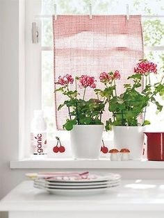 Instant cafe curtains