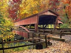 "The bridge from ""The Haunting of Autumn Lake"" by Marcia Lynn McClure!"